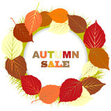 Autumn sale illustration with frame of leaves Royalty Free Stock Photo