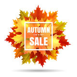 Autumn sale illustration with leaf fall. Autumn sale vector illustration with leaf fall. Season october or november fall in prices banner Royalty Free Stock Photo