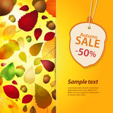 Autumn sale label and background Stock Images