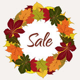 Autumn sale label, circle frame with yellow leaves Stock Images