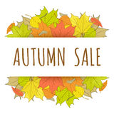 Autumn sale label with hand drawn fallen leaves Royalty Free Stock Images