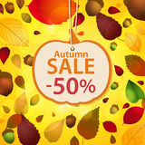 Autumn sale label and leaf background Royalty Free Stock Images