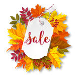 Autumn sale label. Vector illustration Stock Image