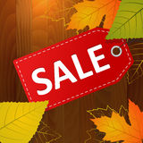 Autumn sale  label on wood background Stock Photography