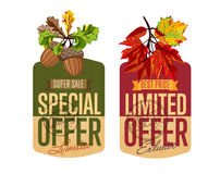 Autumn sale labels set. Special and limited offer Royalty Free Stock Images