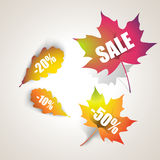 Autumn sale. Autumn leaf with the text. Vector illustration Stock Images