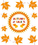 Autumn sale. Stock Photo