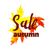 Autumn sale lettering design. Fall leaf. Label, banner template. Stock Photography