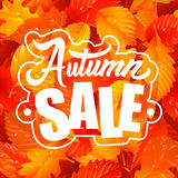 Autumn Sale Lettering and Leaf Seamless Pattern Royalty Free Stock Images