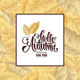 Autumn sale lettering poster, discount, card Royalty Free Stock Photos