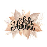 Autumn sale lettering poster, discount, card Stock Photography