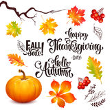 Autumn sale lettering set, Thanksgiving Day. Autumn sale lettering set Thanksgiving Day poster Royalty Free Stock Images