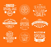 Autumn sale Logotypes set. Special offer badges. And labels, ribbons orelements with leaves, banners. Vector Illustration Royalty Free Stock Images