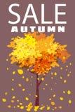 Autumn Sale, malplaatje achtergrondboom met dalende bruine bladeren, geel, oranje, daling, het van letters voorzien, affiche, ban royalty-vrije illustratie