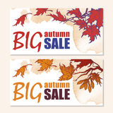 Autumn sale maple branch banner set stock illustration