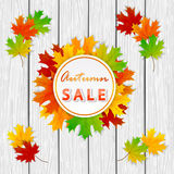 Autumn Sale and maple leaves on white wooden background Royalty Free Stock Image