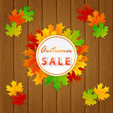 Autumn Sale and maple leaves on wooden background Stock Photos