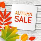 Autumn sale message on wood Stock Photography