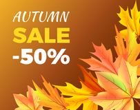 Autumn Sale -50 off Icon Vector Illustration. Autumn sale -50 off sign poster with maple colorful foliage in corner vector illustration isolated on brown Stock Photos