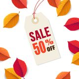Autumn sale 50 off, tag template. Falling bright colorful leaves isolated on white background. Poster, card, label, web. Banner. Seasonal Thanksgiving design Stock Illustration