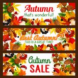 Autumn sale offer banner with fall nature frame Royalty Free Stock Images