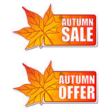Autumn sale and offer labels with leaf Royalty Free Stock Photos