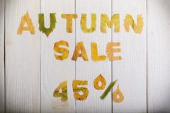 Autumn sale 45 percent. The text `autumn sale 45 percent,` cut from different yellow and orange fallen leaves from the trees and laid on the white wooden boards Stock Images