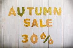Autumn sale 30 percent Royalty Free Stock Image