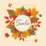 Autumn Sale Poster Design Template Royalty Free Stock Photos
