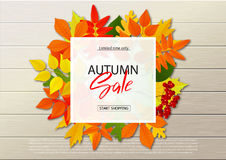 Autumn sale poster with fall leaves on wooden backgrounds. Vector illustration for website and mobile website banners royalty free illustration