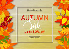 Autumn sale poster with fall leaves on wooden backgrounds. Vector illustration for website and mobile website banners. Posters, email and newsletter designs Stock Photography