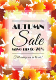 Autumn sale poster, flyer template. Stock Image