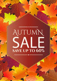 Autumn sale poster, flyer template. Stock Photos