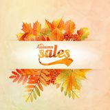 Autumn sale poster with leaves on a old paper Royalty Free Stock Photos