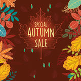 Autumn sale poster with leaves Stock Images