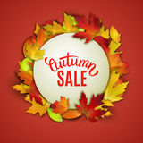 Autumn sale, price tag label, advertising vector illustration with autumn leaves Royalty Free Stock Photos