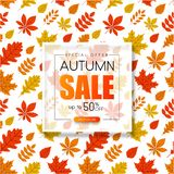Autumn 50% sale. Promotion card with golden leaves pattern. Autumn up to 50 off sale. Promotion card with golden leaves pattern. Shop online. Vector background Vector Illustration