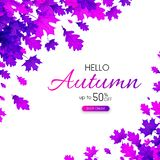 Autumn 50% sale. Promotion poster with purple leaves. Autumn 50 sale. Promotion poster with purple leaves. Shop online. Vector background Vector Illustration