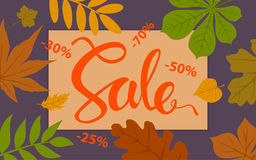 Autumn sale promotional background template with forest fall leaves Stock Photos