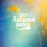 Autumn sale realistic Leaves typography poster. Royalty Free Stock Photography
