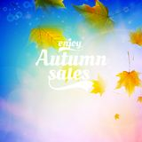 Autumn sale realistic Leaves typography poster. Royalty Free Stock Image