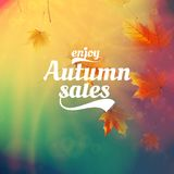 Autumn sale realistic Leaves typography poster. Stock Photography