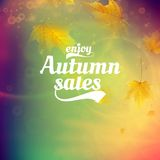 Autumn sale realistic Leaves typography poster. Stock Photos