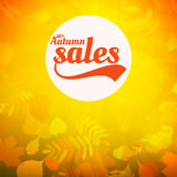 Autumn sale realistic Leaves typography poster. Stock Image