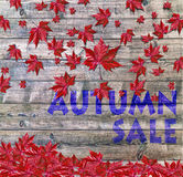 Autumn sale and red falling leaves laying on wooden background Stock Photos