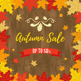 Autumn SALE RETAIL TEMPLATE on wooden background, promotion, advertising Stock Photo