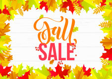 Autumn sale shopping discount vector poster fall maple leaf gold web banner Stock Image