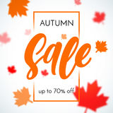 Autumn sale shopping discount vector poster fall maple leaf web banner. Autumn sale background with falling red and orange maple leaves. Vector discount offer Stock Photography