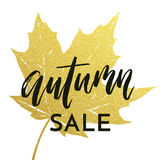 Autumn sale shopping discount vector poster fall maple leaf web banner. Autumn sale poster for September fall shopping with gold maple leaf imprint and discount Royalty Free Stock Photos