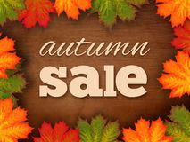 Autumn Sale Sign royalty-vrije stock foto's